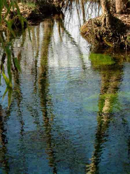 Le acque limpide del fiume Storga